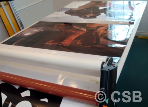 Large Format Printed Window Posters