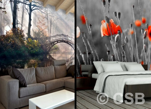 Custom Printed Wallpaper Calgary Murals