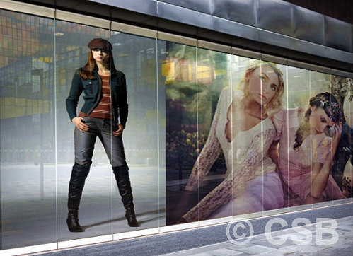 Window Graphics Calgary Signs Company Specialized In The